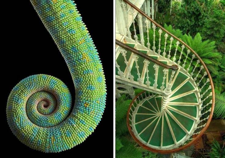 la-espiral-en-arquitectura-e-struc-13
